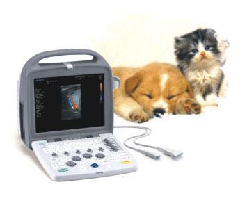 ecografo-portatil-veterinario-siui-proveeduria-medica-apogee